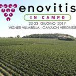 Enovitis in Campo: 22-23 giugno 2017