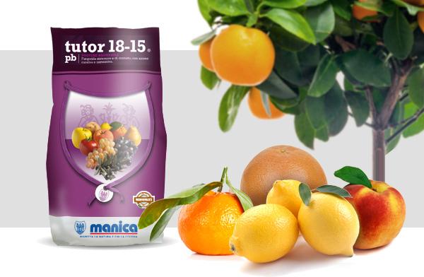 frutti di agrumi e confezione di Tutor 18-15