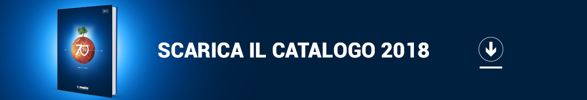 download catalogo Manica 2018