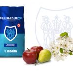Confezione di Ossiclor 35 wg di Manica con mele e pere