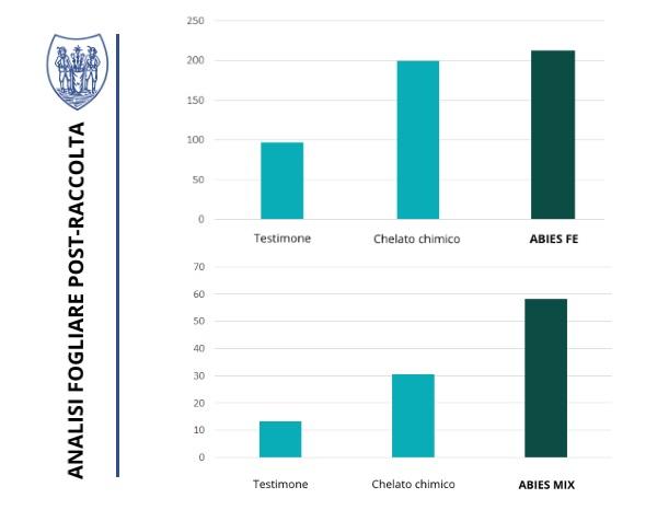 analisi di trattamenti post raccolta con abies