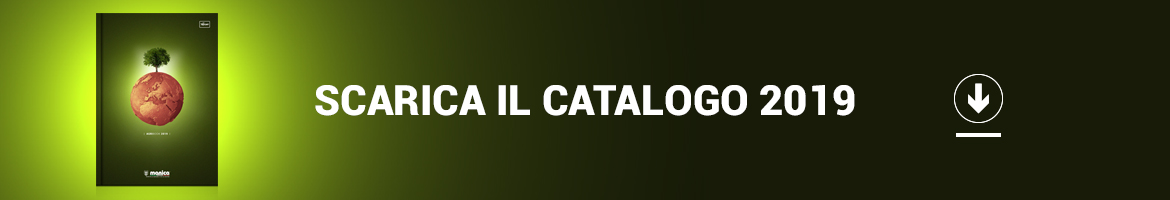 Download catalogo 2019