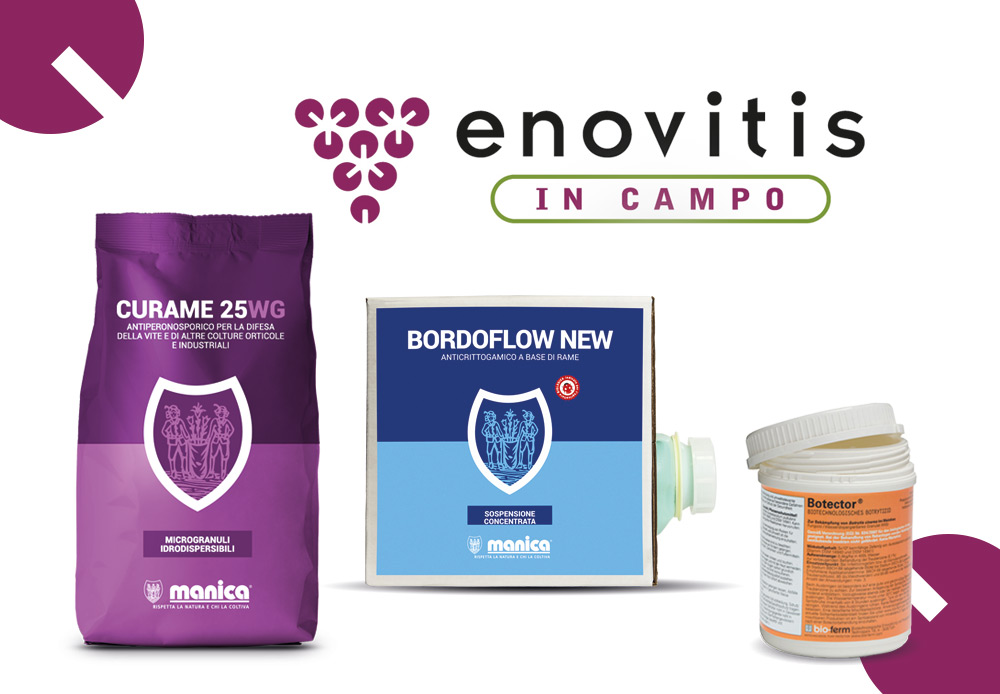 Enovitis in campo 2019 Manica