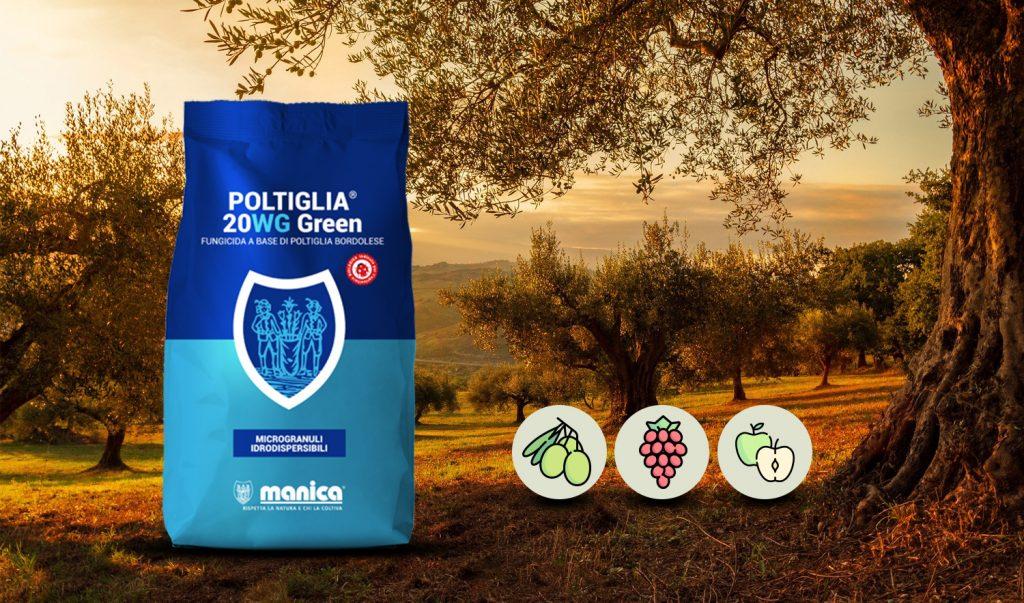 Poltiglia 20 WG Green - Poltiglia Bordolese su Actinidia ...