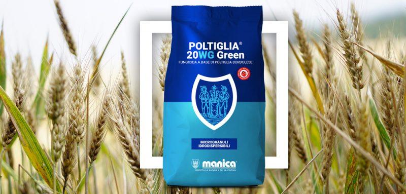 Manica_poltiglia-bordolese-20wg-green-frumento