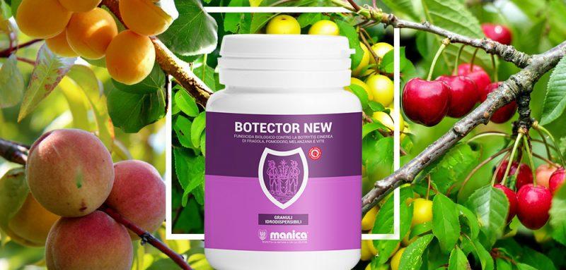 Botector New contro monilia drupacee